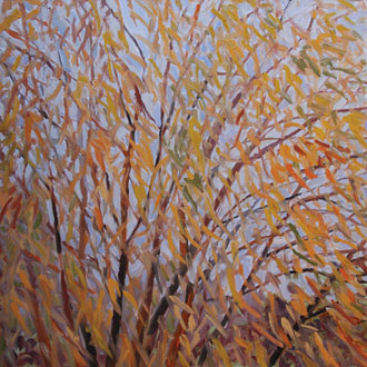 Yellow Willow, Blue Sky